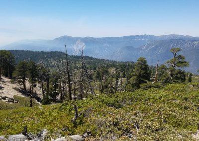 San Bernardino Peak 7
