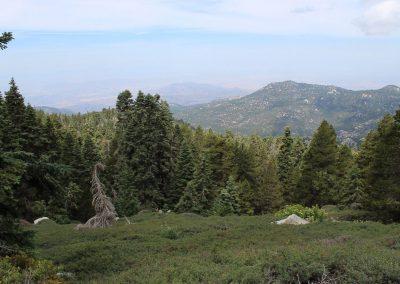 San Jacinto Peak7